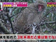 ビートたけしのTVタックル 20160125