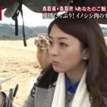 """昼めし旅 鳥取""""寒ブリのあったか赤だし""""&沖縄""""アグー豚の絶品!沖縄そば"""" 20160201"""
