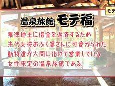 モテ福「牛!牛!!牛!!!伝説の番頭がモテ福に登場!」 20160203