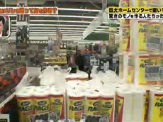 所さんのそこんトコロ【ホームセンターで突撃!コレ買って何を作る?】 20160205