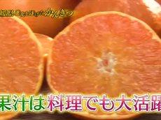 満天☆青空レストラン/愛媛・驚きの甘さ!新みかん勢ぞろい 20160206