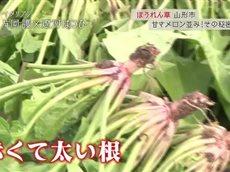 ごはんジャパン 本物を探す旅へ~山形県 メロン級に甘い!?赤根ほうれん草~ 20160206
