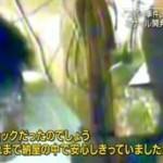 報道ステーション SUNDAY 20160207
