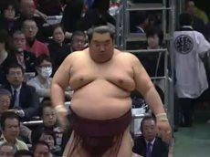 大相撲 幕内の全取組「春場所 五日目」 20160317