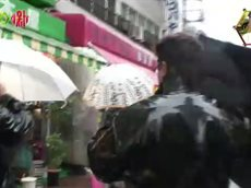 チマタの噺【鶴瓶が佐野史郎とのトイレ密談を暴露!?】 20160322