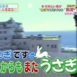 厳選いい宿<伊豆・稲取温泉 癒やしの和モダン宿 大幅割引プラン!!> 20160329