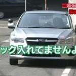 あさイチ「長崎に謎のねこ集団!そして冷めてもおいしい天ぷら!」 20160331
