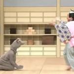 にっぽんの芸能「5年間の総決算!アンコール特集」 20160401