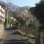 渡辺篤史の建もの探訪 20160402