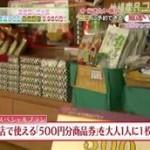 厳選いい宿<南伊豆・弓ヶ浜 海辺に佇む絶景の湯宿 格安1万円以下!!> 20160408