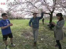 あっぱれ!KANAGAWA大行進「愛川町」 20160409