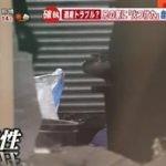 羽鳥慎一モーニングショー 20160412