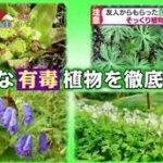 白熱ライブ ビビット 国分太一 真矢ミキ 20160412