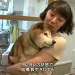 ドキュメント72時間「仙台 北のどんぶり飯物語」 20160415
