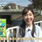 ハマナビ「横浜の川を楽しもう!」 20160430