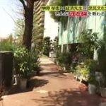 なるほどストリート「榊原郁恵が目黒通りをお散歩」 20160503