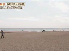 じゅん散歩 20160504