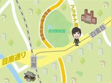 なるほどストリート「榊原郁恵が目黒通りをお散歩」 20160505