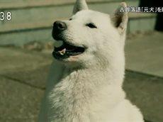 超入門!落語 THE MOVIE 20160506
