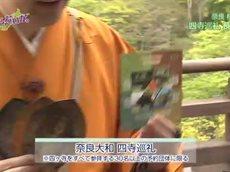 ええじゃないか。「奈良大和路・四寺巡礼でええ旅さがし」 20160506