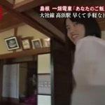 """昼めし旅 島根""""ローカル線の旅…とろ玉カレー""""&大根島""""ナゾのお魚コロッケ"""" 20160506"""
