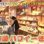 所さんのそこんトコロ【日本人の暮らしが変わる!2016年驚きの最先端SP】 20160506