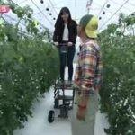 LOVEかわさき「春の野菜を食べよう」 20160507