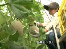 TVシンポジウム「農業女子力で変える・変わる!日本の農業」 20160507