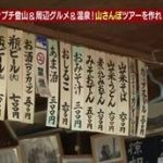 土曜スペシャル「箱根&房総 60分のプチ登山&周辺グルメ&温泉ツアーを作れ!」 20160521