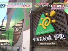 厳選いい宿<伊豆・伊東温泉 家族にオススメリゾートホテル 格安1万円以下!!> 20160525