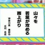 NHK俳句 俳句さく咲く! 題「若葉」 20160525