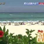 ザ!世界仰天ニュース 世界のワケあり物件スペシャル! 20160525
