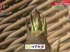 あさイチ「タケノコのあく抜き@二子玉川、おいしいステーキ@二子新地」 20160526