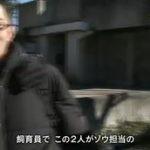 """ドキュメント72時間・選「アンコール 真冬の東京 その名は """"はな子""""」 20160610"""