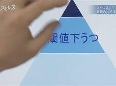 NHKスペシャル キラーストレス 第2回「ストレスから脳を守れ」 20160619