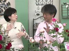 手づくり花づくり「小山内さんおすすめ!New Roses」 20160623