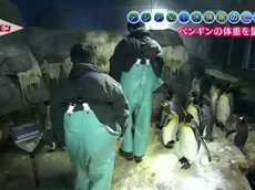 探検バクモン「アジアNo.1水族館のヒミツ 探究の海」 20160623
