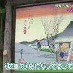 歴史の道 歩き旅~藤田朋子の東海道歩き旅「府中宿から丸子宿」~ 20160627