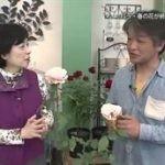 手づくり花づくり「バラ・花後のせん定と植え替え」 20160630