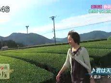 歴史の道 歩き旅~藤田朋子の東海道歩き旅「静岡」~ 20160701