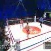 ボクシングフェス5・8~井上尚弥&八重樫東ダブル世界戦~ 20160508
