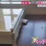直撃LIVE グッディ! 20161125