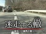 NNNドキュメント「迷走する轍(わだち)~貸切バス業界の闇~」 20161204