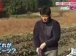 あさイチ「3シェフNEO~スーパーフード・ビーツ~」 20161206