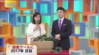 ゆうがたサテライト【驚き!新種の国産野菜】 20170105