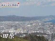7ch 2017年02月14日(火)