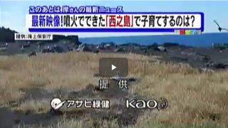 情報ライブ ミヤネ屋 20170210