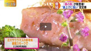 ゆうがたサテライト【新プラン続々…豪華客船と列車の旅!】 20170301