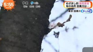 めざましテレビ 20170321