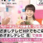 めざましテレビ 20170327